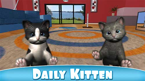 Daily Kitten virtual cat pet Apk