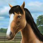 My Horse 1.27.1 Apk + Data for Android