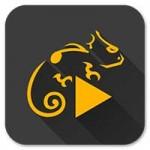 Stellio Music Player Android