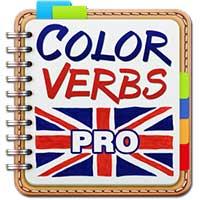 English Irregular Verbs PRO Android thumb