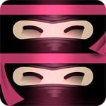 The Last Ninja Twins 8 Apk Mod Android