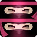 The Last Ninja Twins Android thumb