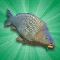 Carp Fishing Simulator Android thumb