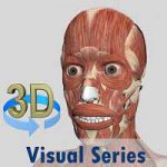 Visual Muscles 3D Android thumb