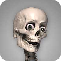 Skelly: Poseable Anatomy Model Android thumb